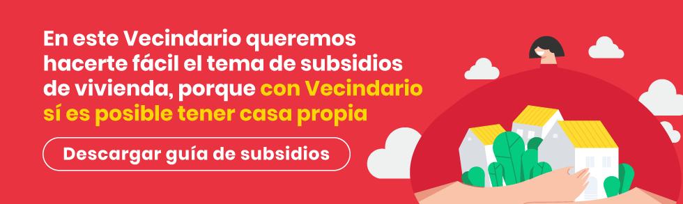 Guia-Subsidios-descarga
